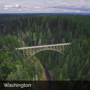Washington state woods with bridge spanning ravine